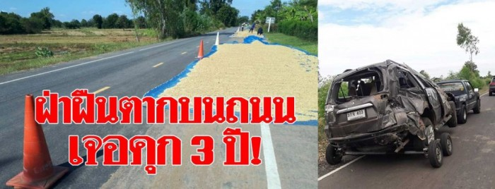 rice on road 06